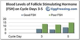 Test Your Ovarian Reserve Eggfreezing Com