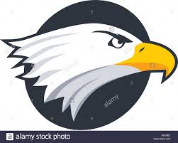 bald eagle template bold eagle template stock vector art illustration vector image