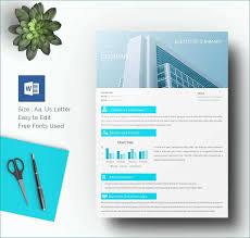Free Executive Summary Template Amazing 30 Perfect Executive Summary