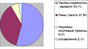 Дипломная работа Работа фельдшера скорой помощи ru ВСЕГО 48