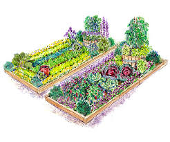 Small Picture Colorful Vegetable Garden Plan
