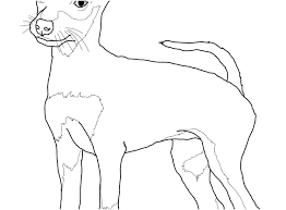 Dachshund Coloring Pages Free Dropnewsme