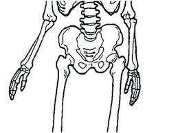 Skull And Crossbones Coloring Pages Predragterziccom