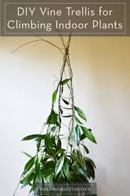 diy trellis for climbing indoor potted