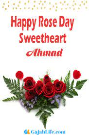 Ahmad Happy Rose Day 2020 Images, wishes, messages, status, cards,  greetings, quotes, pictures, GIFs and wallpapers