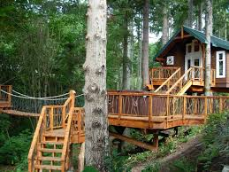 kids tree house plans designs free. Furniture, Awesome About Treehouse Designs Free With Nice Bridge And Amusing Staircase Green Roof Kids Tree House Plans N