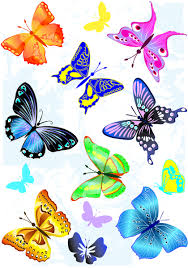 Free Download Clipart Sorts Of Butterflies Clip Art Vector Free Vector In