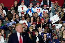 Image result for trump washington michigan rally pics