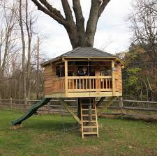 basic tree house pictures. Basic Residential Treehouses Tree House Pictures