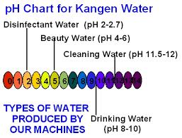 Kangen Water Reflexology3213