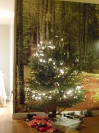 Sherwood Forest  Christmas StoreSherwood Forest Christmas Trees