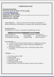 Resume Templates Pdf Examples Curriculum Vitae Word Format Sample