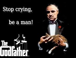 Godfather Quotes Gorgeous Famous Godfather Quotes About Stop Crying Be A Man Golfian
