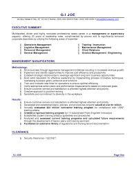 It Resume Summary Examples. resume sample it. resume career ...