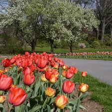 visiting clark botanic garden