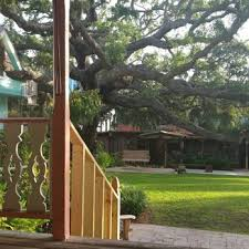 Cedar Key Bed & Breakfast 53 s & 22 Reviews Hotels 810
