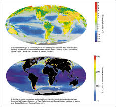 Measuring Global Ocean Production From Space Download