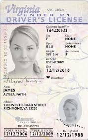 """Virginia Law"""" Medical And Driver's Identification """"jp's Expanded Indicators Cards Licenses"""