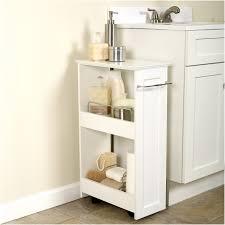 Shelves Ideas Marvelous Bathroom Shelving Ideas Marvelous Modern