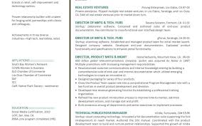 Resume Of A Marketing Manager Resume For Your Job Application