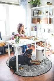 office pet ideas. Office Pet Ideas Setup Decor White Desk Desks Gifts C