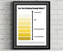 Toddler Urine Colour Chart Urine Color Chart Pee Color Chart Water Intake Chart Pee Meaning Dark Urine Urine Color Bright Yellow Urine Pee Chart Instant Download