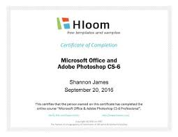 Completion Certificate Sample 7 Certificates Of Completion Templates Free Download