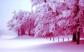 background hd winter in high resolution ...