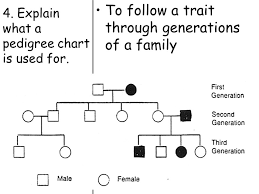 What Are Pedigree Charts Used For Topic Genetics Aim How Do We Use Pedigree Charts To Follow