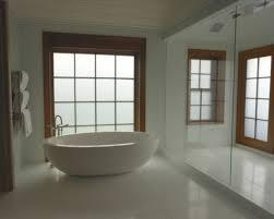 Decorative Bathroom Windows Decorative Glass Windows Traditional - Decorative glass windows for bathrooms