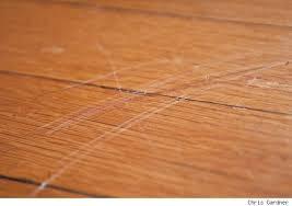 Photo Of Repair Scratch Hardwood Floor Repair Scratch Hardwood Floor  Scratched Wood Floors