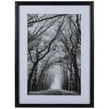 black white trees framed wall decor