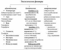 Реферат Экологические факторы среды ru Экологические факторы среды 7