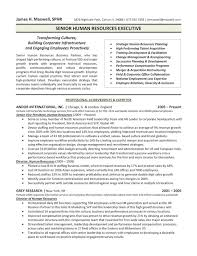 Executive Format Resume Template Executive Resume Samples