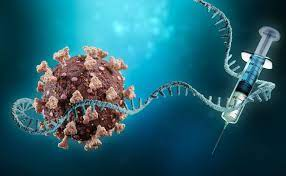 Streamline mRNA Vaccine Development with Rapid Multiplexed Potency Tests