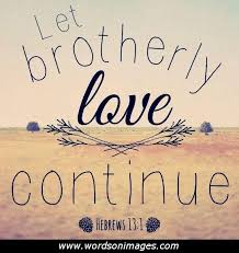Brotherly Love Quotes Impressive Funny Quotes On Brotherly Love On QuotesTopics