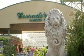 garden center nj. 43 Photographs Of Lions : Corrado\u0027s Garden Center Clifton NJ Nj