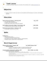 Resume Objective Simple resume objective template eskillsco