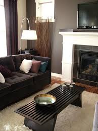 sofa colour brown living room decor