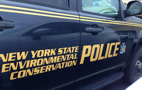 Doe shot from back of pickup truck leads to charges – The Buffalo News