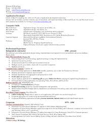 Excel Resume Template Application Development Computer Skills