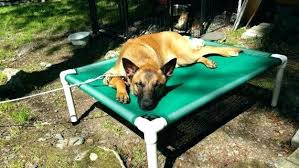 outdoor raised dog bed outdoor dog bed orthopedic dog bed mesh dog bed mesh colors raised