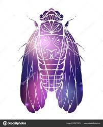 рука рисованные винтаж цикада бохо шаблон космический фон насекомое