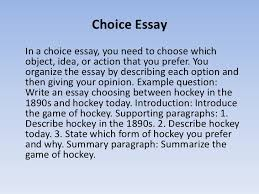 choice essay examples madrat co choice essay examples