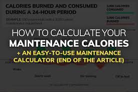 What Are Your Maintenance Calories Maintenance Calorie