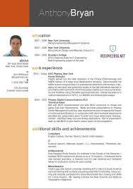 best resume format 8 resume cv