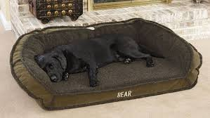 5 Durable Dog Beds for Man s Best Friend from LL Bean Orvis