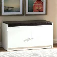 white shoe cabinet furniture. Shoe Storage Furniture In Modern And Contemporary White Wood 2 Door Cabinet C