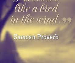 Life Line Quotes Preserve like a Bird in the Wind httpwwwgrannyquotesone 18