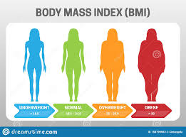 Underweight Normal Overweight Obese Chart Bmi Body Mass Index Vector Illustration With Woman